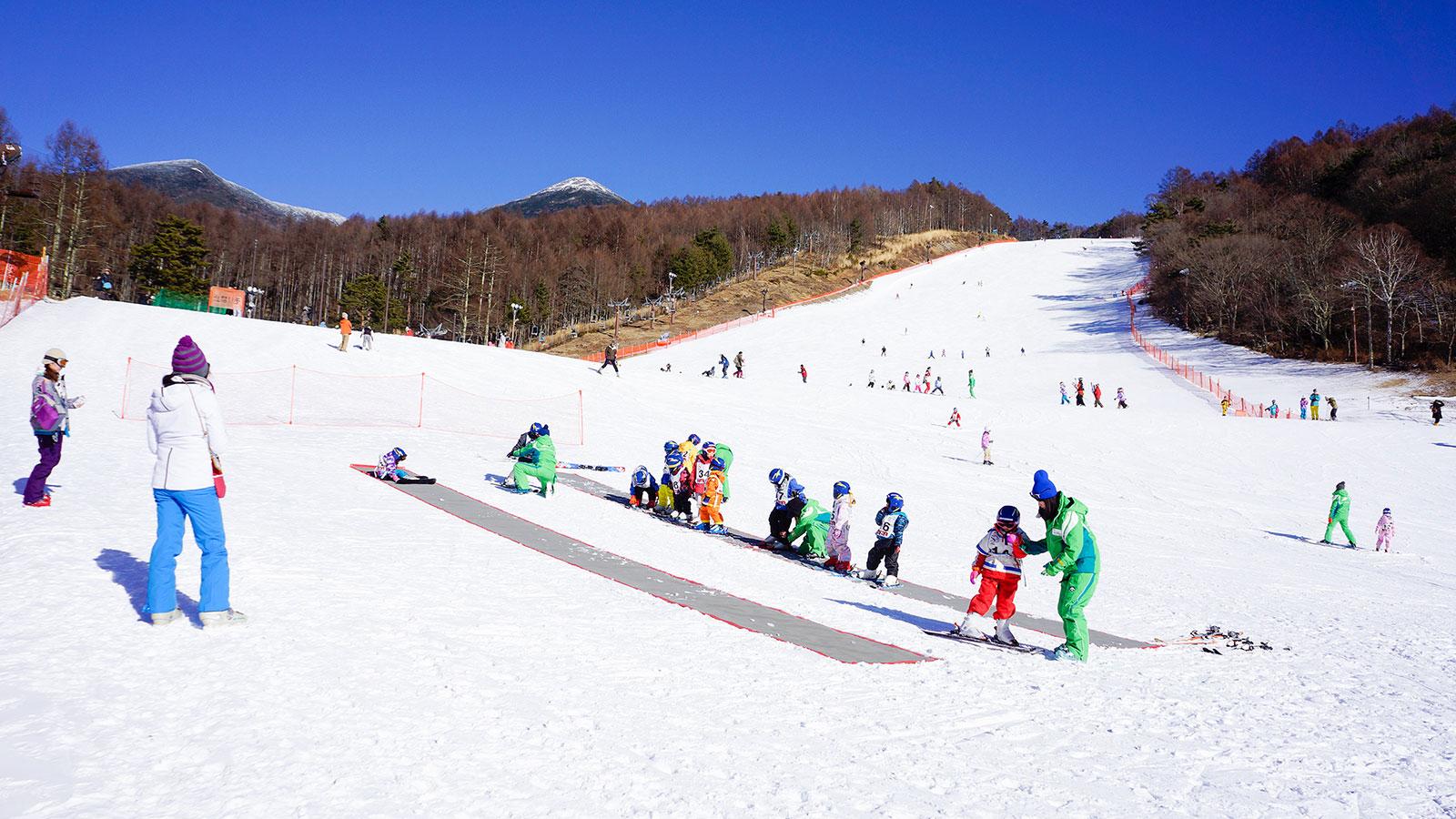 富士見高原スキー場 - 富士見高原スキー場